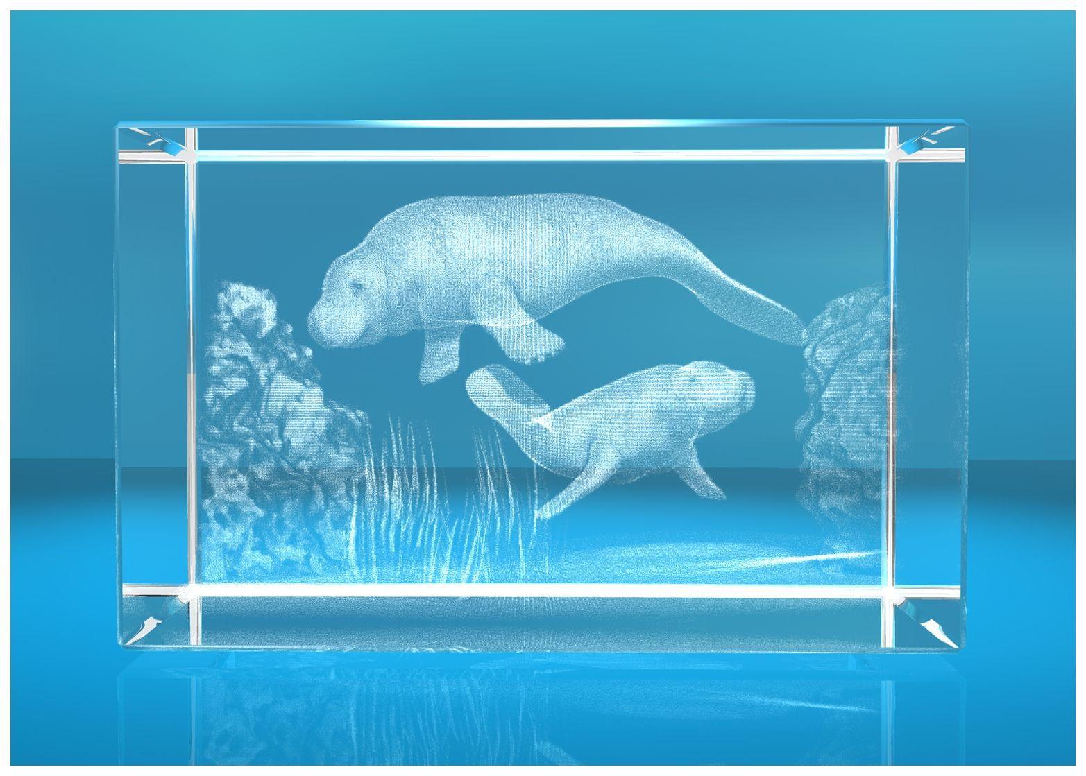 3D Glasquader   Motiv: Seehunde